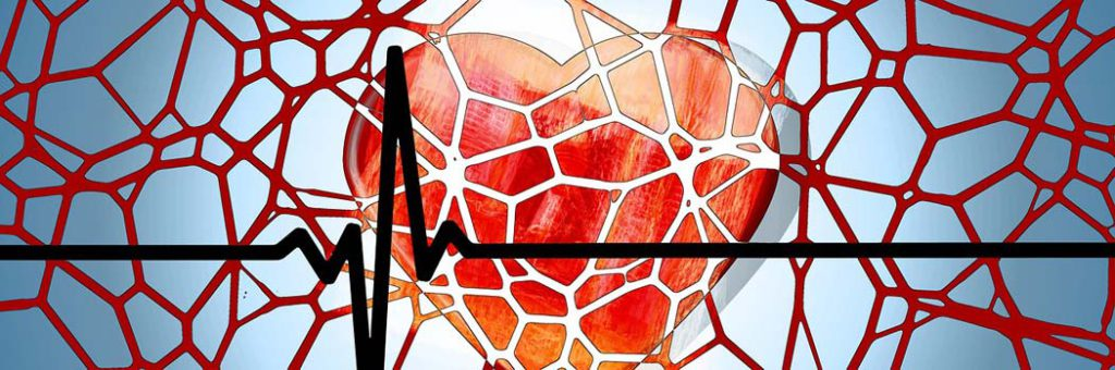 zdravje-kri-srce
