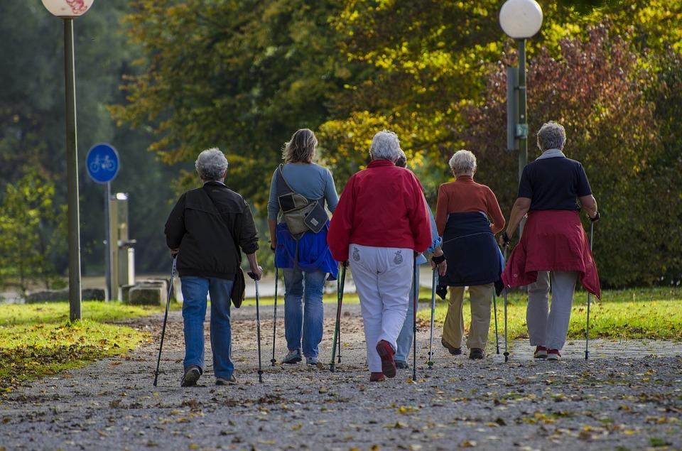 Nordijska hoja je posebna oblika hoje s pomočjo palic in predstavlja vadbo celotnega telesa.