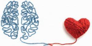 povezava mozgani in srce