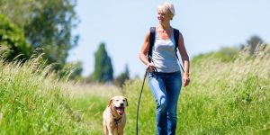 sprehod v naravi s psom